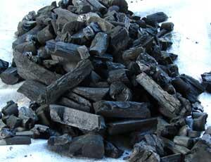 Vegetable coal.