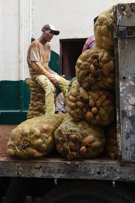 Potatoes being unloaded.  Photo: Juan Suarez