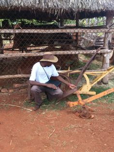 Tarirai Mpofu with draft animal implements. Photo: pinterest.com