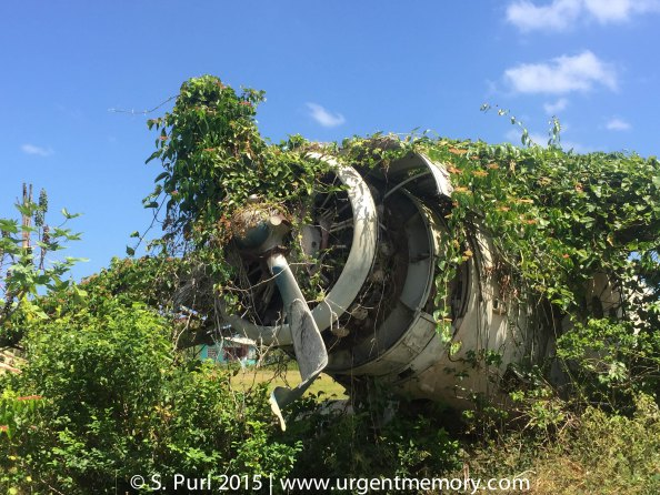 Overgrown Cuban plane at Pearls, left there from the time of the Grenada Revolution