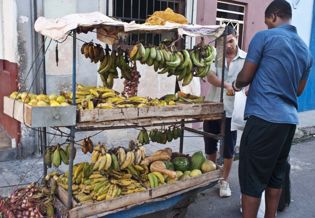 A recent crackdown could make vegetable and fruit carts an endangered species.