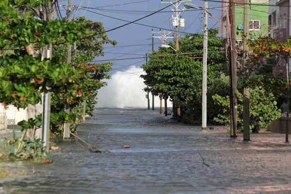 flooding-1-23-2016-portada