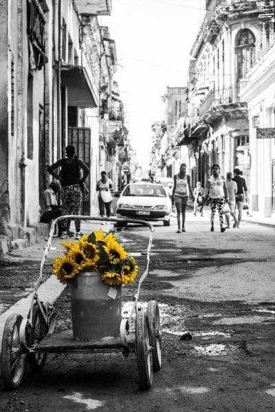 Photo: Carlos Vilá