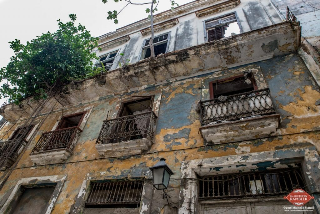 Trees grow out of a balcony after 50 years of neglect of once-grand houses in Havana (Michelle Stancil)