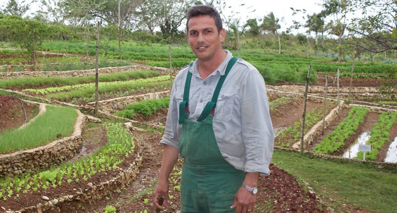 Initiatives, such as that of Funes and his organic farm, show that organic farming is possible in Cuba. Photo: Raquel Perez Diaz