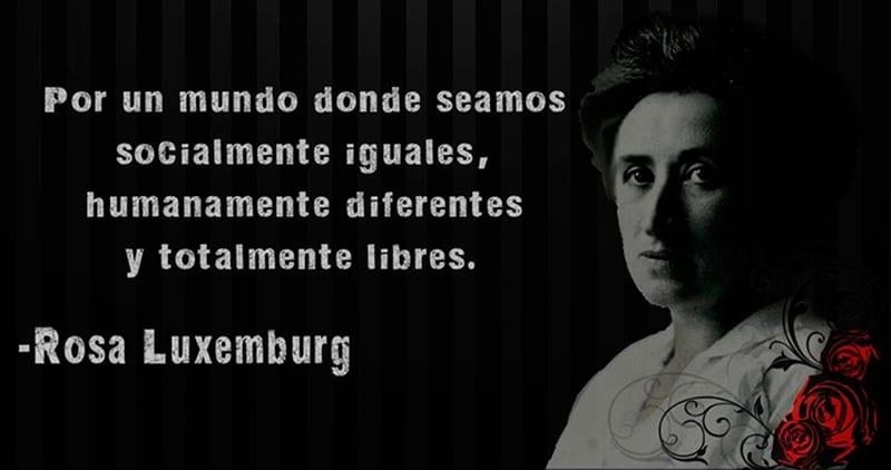 For a world where we are socially equal, humanly different and totally free. - Rosa Luxemburg