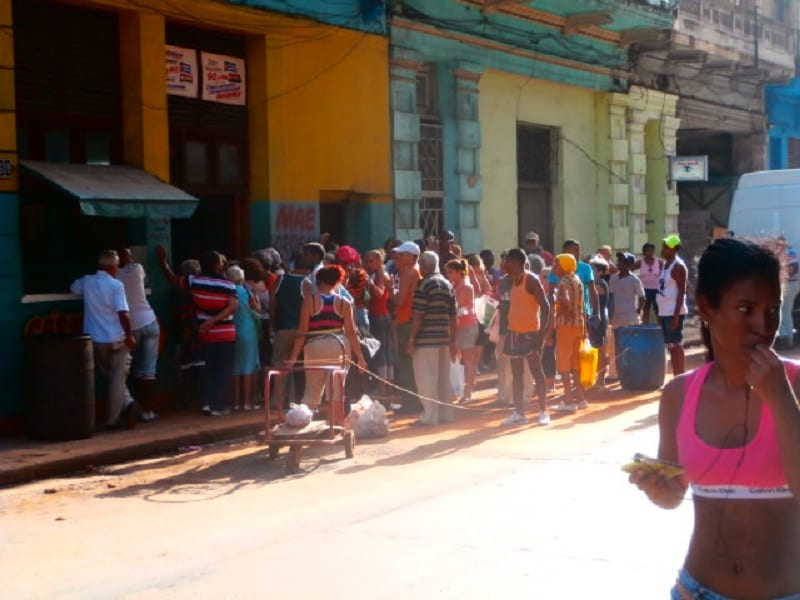 The line at the agro-market.