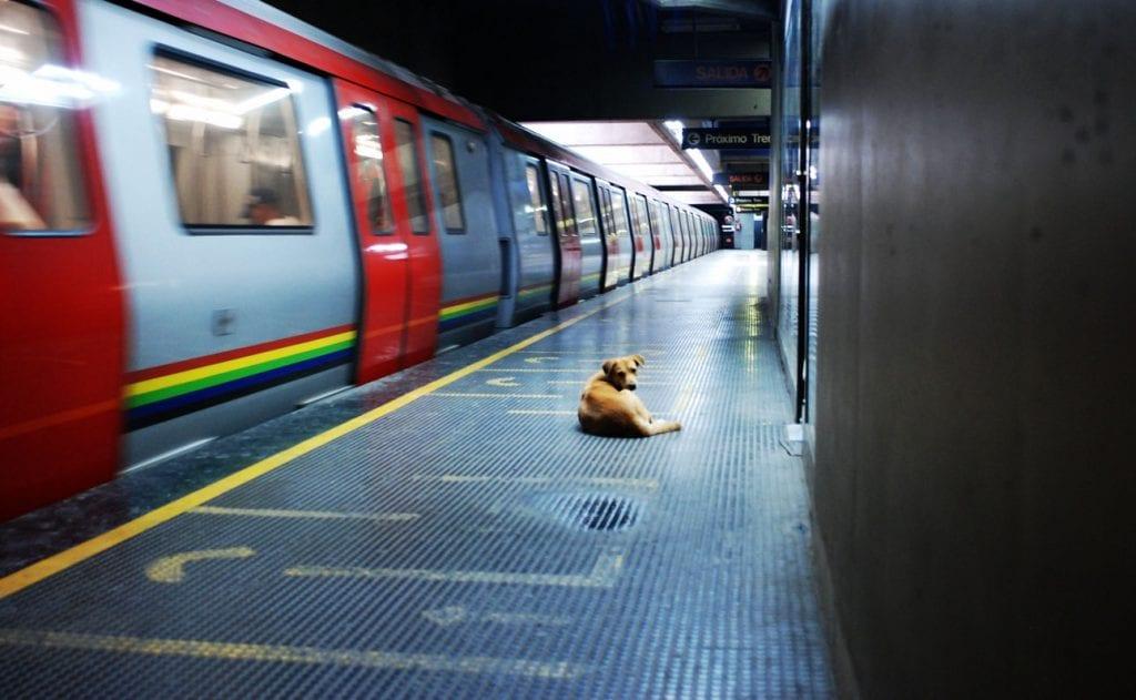 La Linea 1 del metro de Caracas