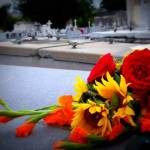 Flowers, Angels and Epitaphs in Havana's Colon Cemetery