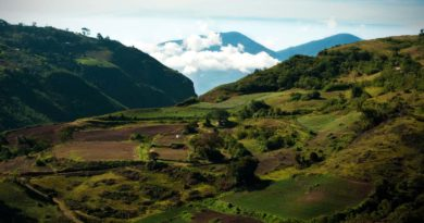 En Route to Hato Arriba, Venezuela (Photo Feature)