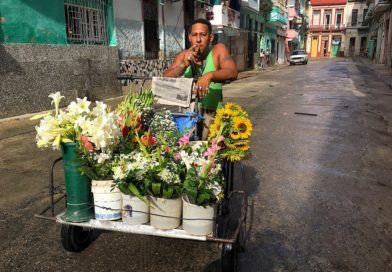 "Finalists 11th HT Photo Contest – ""Life in Cuba"""