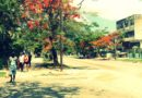 Everyday Images of Havana