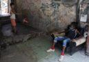 Havana Weather for July 22-28
